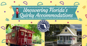 quirky accommodations