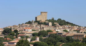 https://commons.wikimedia.org/wiki/File:Village_of_Chateauneuf-du-Pape.JPG