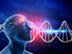 https://www.freepik.com/free-photo/3d-medical-background-with-male-head-brain-dna-strands_1218628.htm#page=1&query=brain%20cells&position=11