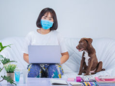 https://www.freepik.com/free-photo/freelance-work-from-home-young-woman-is-working-near-dog-sofa-home_7955616.htm#page=1&query=covid%20pet%20&position=35