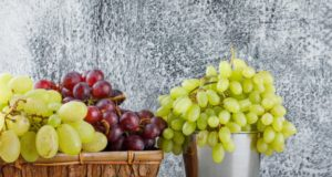 https://www.freepik.com/free-photo/grapes-mini-bucket-basket-side-view-plaster-grungy-grey_10183653.htm#page=1&query=winery&position=9
