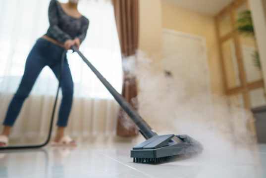 https://www.freepik.com/premium-photo/woman-washes-floor-with-steam-mop_7462753.htm#page=1&query=floor%20steam%20cleaner&position=11
