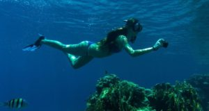Tips for Taking Underwater Photos