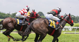 https://www.freepik.com/premium-photo/race-hose_3849972.htm#page=6&query=horse+race&position=32