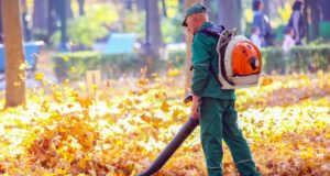 https://www.freepik.com/premium-photo/working-park-removes-autumn-leaves-with-blower_11716187.htm#page=1&query=leaf%20blower&position=2