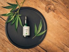 https://www.freepik.com/premium-photo/cannabs-medical-product-cbd-oil-with-hemp-leaves-black-dish-wooden-table-flat-lay-mockup-copy-spase_10215486.htm#page=1&query=cbd%20oil&position=0
