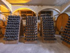 https://www.freepik.com/premium-photo/wine-cellar-with-barrels-bottles_11902689.htm