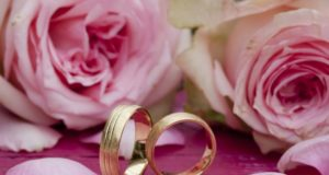 https://www.freepik.com/free-photo/closeup-shot-engagement-rings-with-beautiful-pink-roses-table_13554670.htm?query=wedding%20rings
