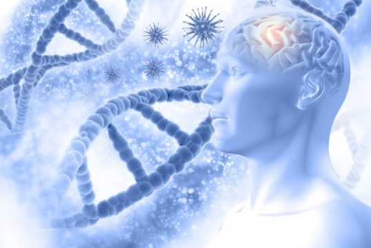 https://www.freepik.com/free-photo/3d-medical-background-with-male-figure-with-brain-virus-cells_1138372.htm#page=1&query=alzheimers&position=20