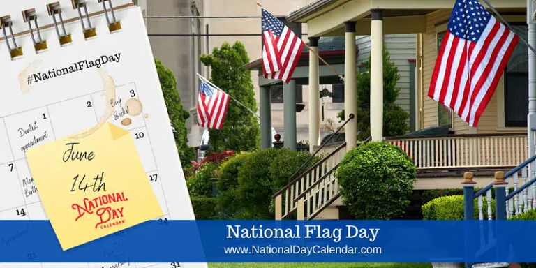 The Current 50-Star Flag Was Designed In 1959 By A 17-year ...