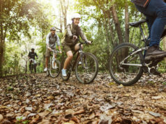 https://www.freepik.com/free-photo/group-friends-ride-mountain-bike-forest-together_2894020.htm#page=1&query=bicycle&position=4